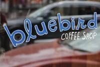 The Bluebird Coffee Shop logo as written in the window of the shop, bluebird in lower case blue, COFFEE SHOP in upper case white.