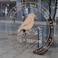 The Fig + Sparrow logo painted in white on the window, rain lashing down on the street outside.