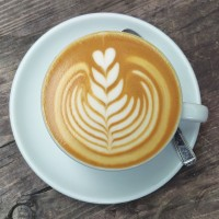 A nine-leaf tulip latte-art pattern in a classic white cup, seen from above.