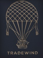 a line-drawing of an old-fashioned ship, slung under a large, Victorian balloon.