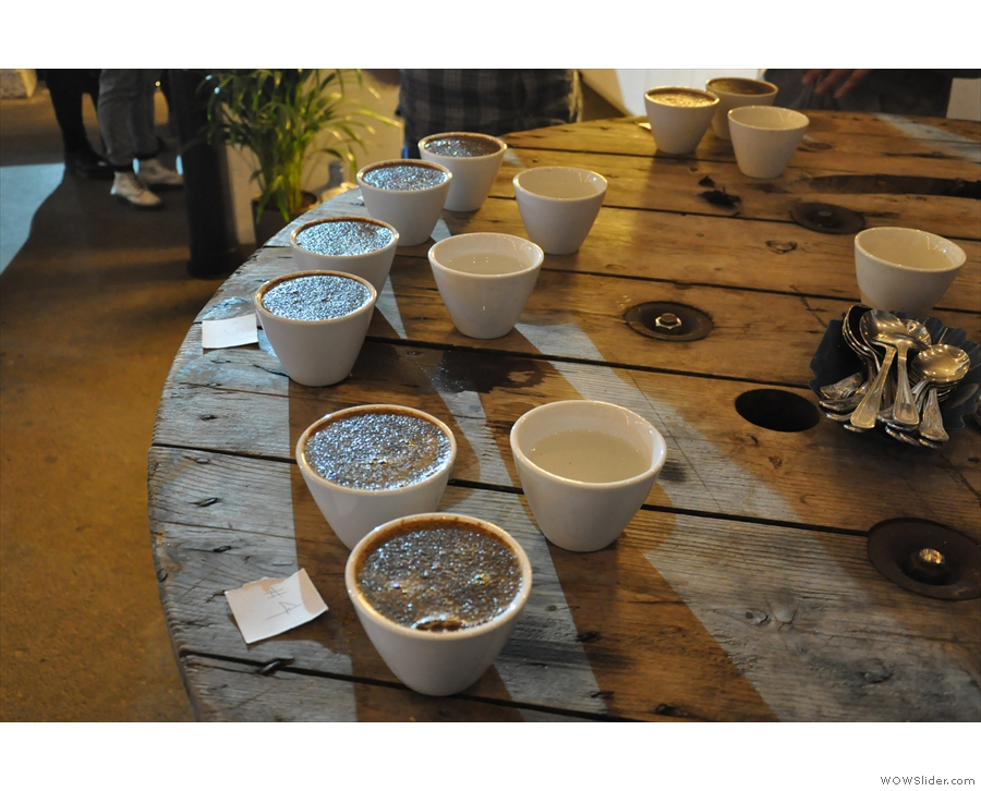 The cupping bowls are now ready to go... Let the slurping commence!