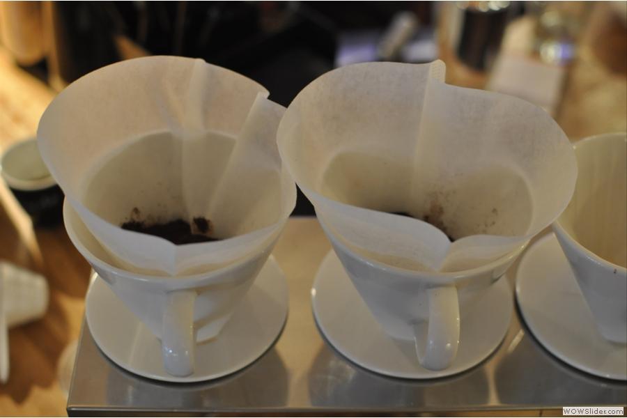 Blooming coffee!
