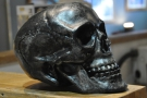 ... with this skull at the other end of the counter.