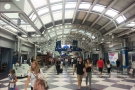 A novel experience: domestic arrivals, Terminal 1, O'Hare, where a surprise waited for me.