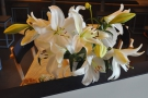 Talking of which, these flowers were on a tabe in the seating area on the other side.
