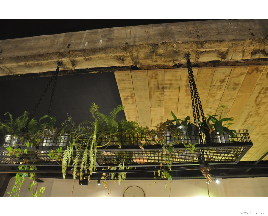 The interior is fairly austere, but enlivened by these plants above the central table.