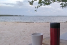 Here they are relaxing on Cannon Beach in Key Largo...
