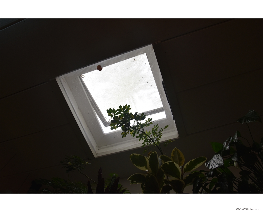 There's not a lot of natural light, just the window at the front and this skylight at the back.