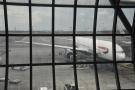 My plane again...