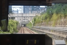 The Saikyo Line runs non-stop between Ebisu and Osaki. The Yamanote Line also takes...
