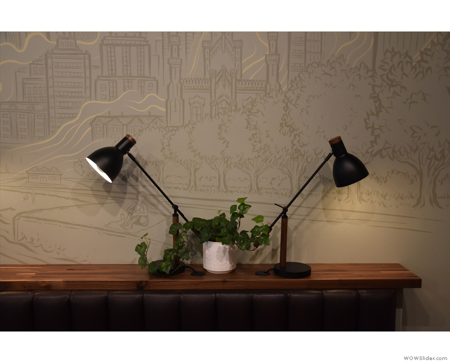 And here are the lights in more detail. I love the pairs of desk lamps.
