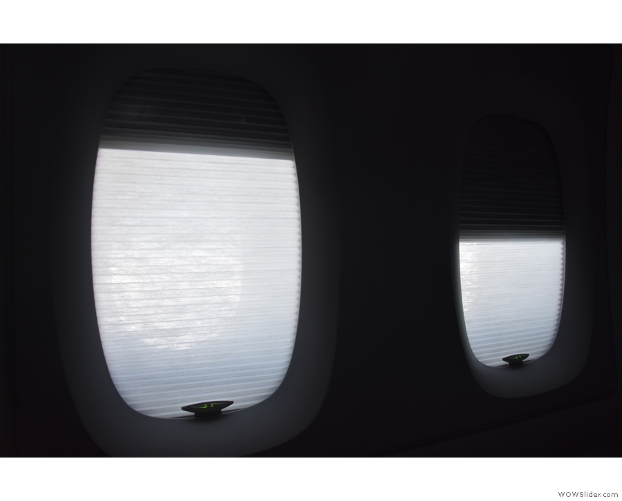 These have a double set of blinds. The inner ones are blackout blinds...