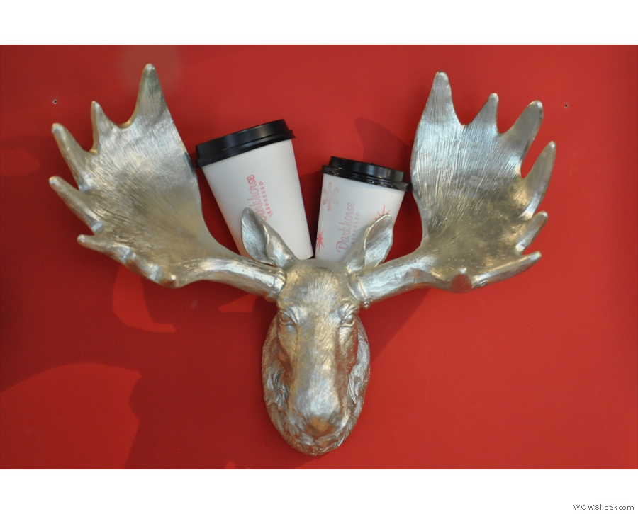 Hmmm... Silver Moose Espresso anyone?