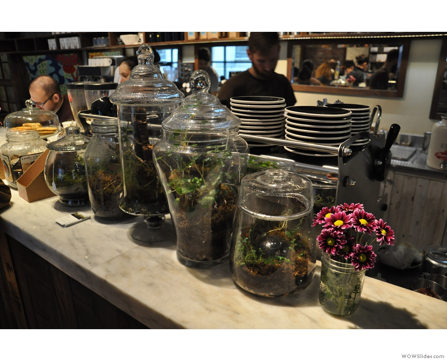Another nice touch are these bottled plants...