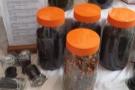 ... what's in those orange jars? Tea? Tea! * splutters * Coffee Charisma's selling tea?