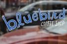 Bluebird Coffee Shop in New York City, a lovely neighbourhood spot.