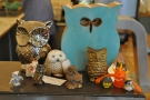 There are also owls. Every coffee shop should have an owl or two...
