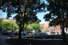 ... without realising that across this leafy square was the lovely Bard Coffee.