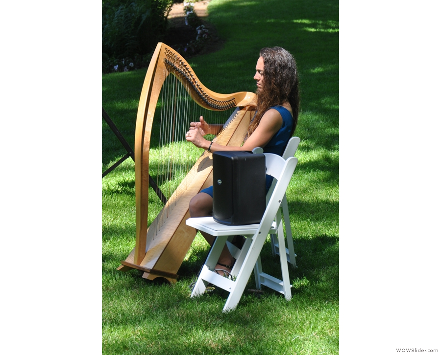 Musical accompaniment was by harp.