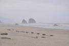 ... I believe that the rocks disappearing into the sea fog are Silver Point and Jockey Cap.