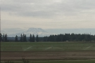 My first view of Mt Rainer, decapitated by a layer of cloud & a staggering 80 kilometers away!