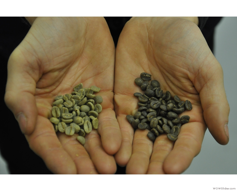 To decaf or not? It certainly takes more than just caffeine out of the beans: decaf green beans (on the right) are grey! [Picture taken at North Star Micro Roasters]