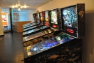 Another view of the pinball machines, this time looking back towards the doors.