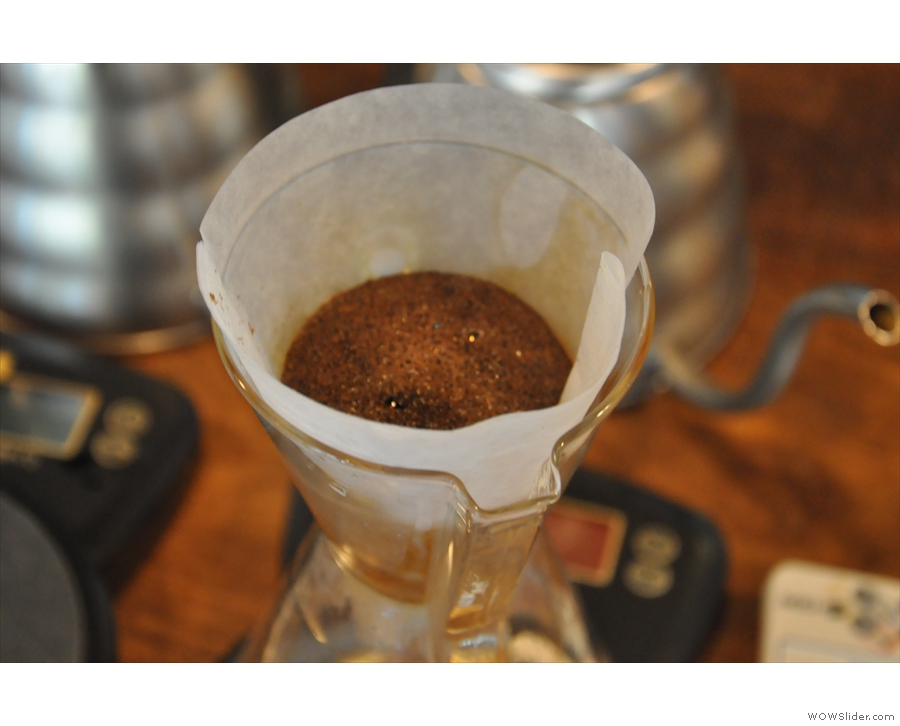 Here's my Peru Finca La Flor del Sapote blooming after the first pour.
