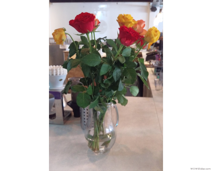 Meanwhile, these roses were on the end of the counter.