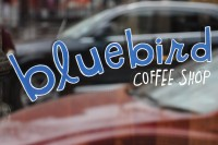 The Bluebird Coffee Shop logo as written in the window of the shop, bluebird in lower case blue, COFFEE SHOP in upper case white.