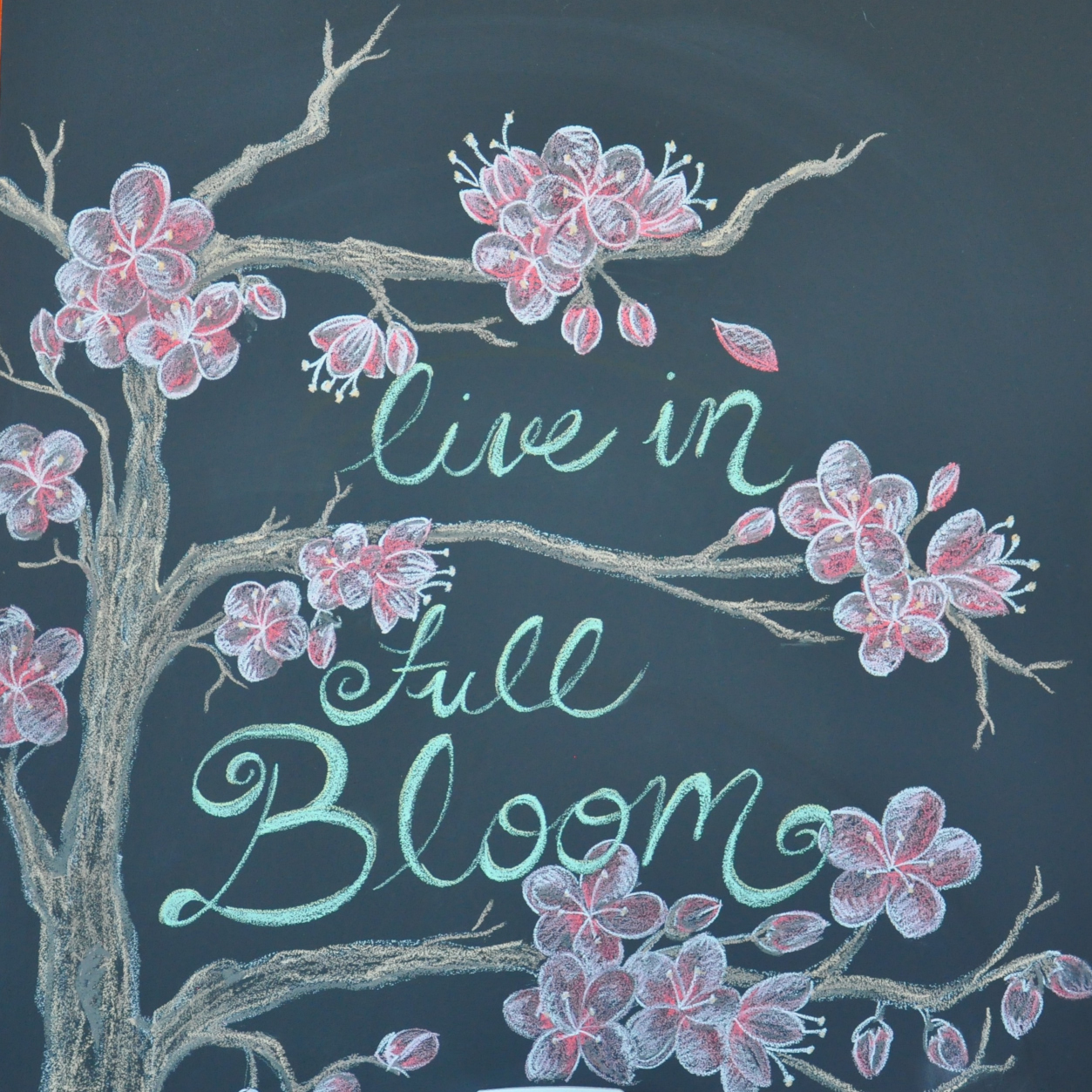 "A chalk drawing on the wall at Stoked Roasters + Coffeehouse, showing a blossom tree in bloom with the words ""Live in full Bloom"""