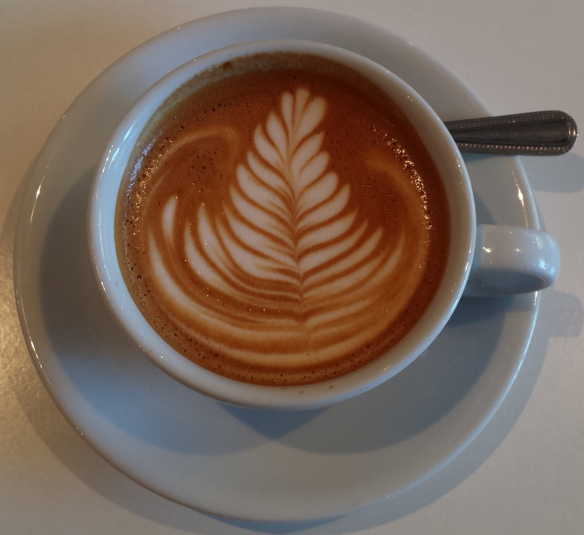 A flat white in a classic white cup seen from directly above with a multi-leaf fern motif in the latte art.