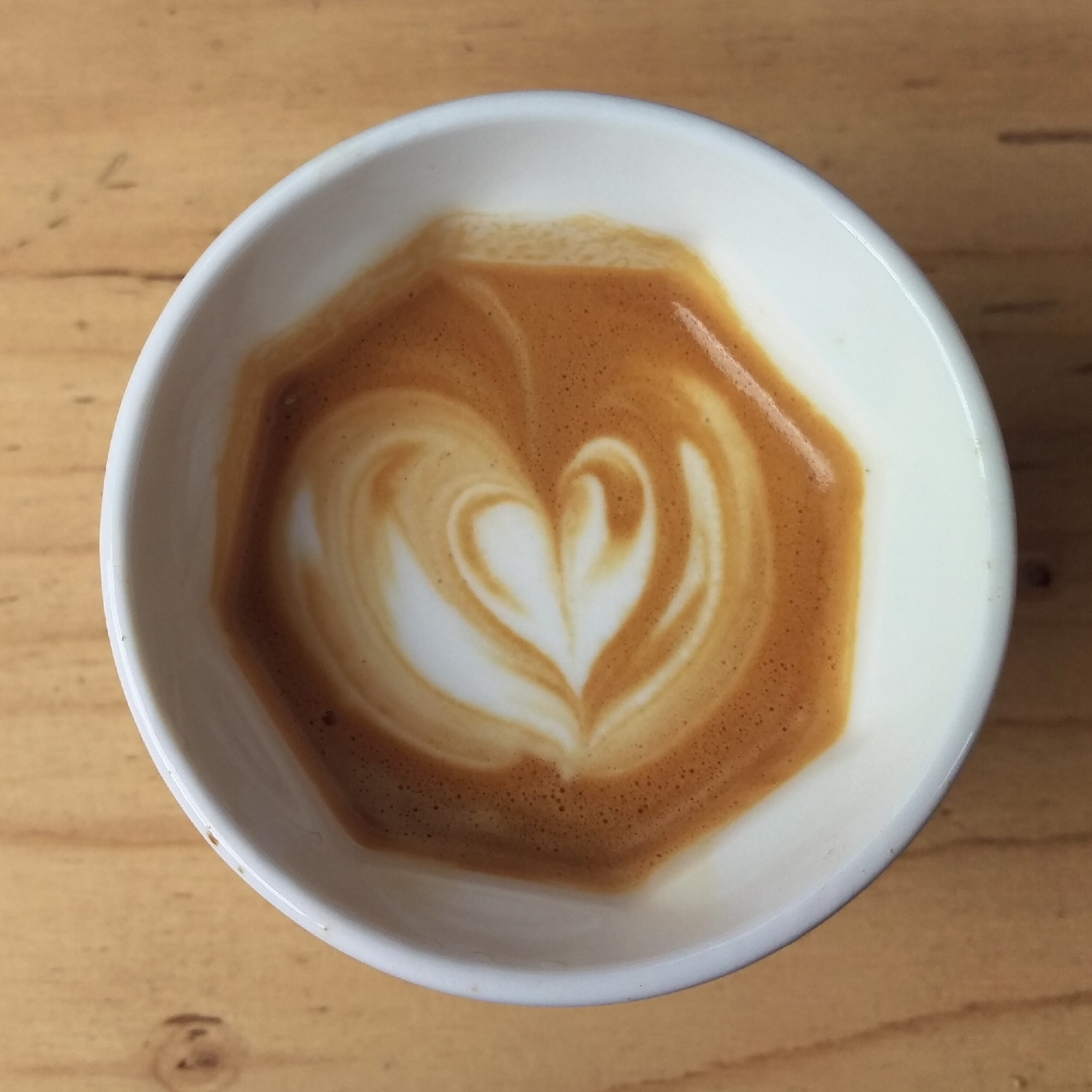 A heart-shaped tulip in my Therma Cup, a white, porcelain reusable mug, with a circular rim and an octagonal interior.