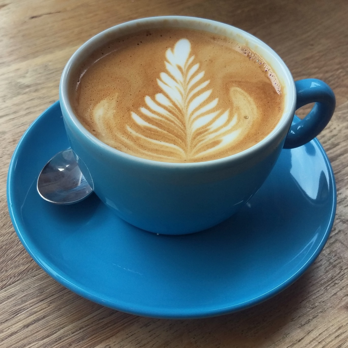 A flat white in a blue cup, with some excellent fern-leaf latte art from the Urban Larder in Cambridge.