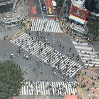 Tokyo's famous Shibuya Crossing, as seen from my hotel, where hordes of people come to see the hordes of people crossing the road...