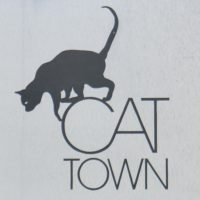 The Cat Town logo, showing the silhouette of a cat climbing down the C of Cat Town.