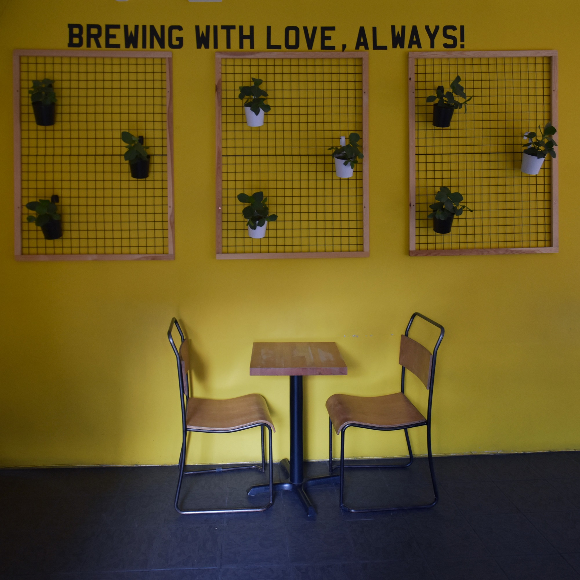 Brewing with love, always! The message written on the wall above a set of plants and a solitary two-person table at Coffee Under Pressure in St Mary's Butt, Reading.