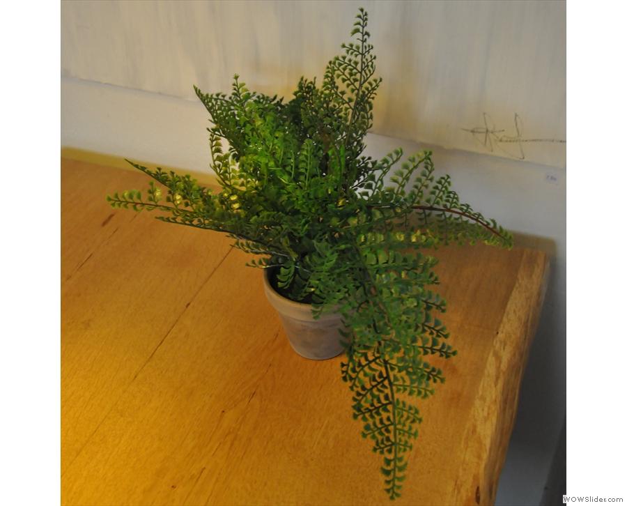 I like a coffee shop with plants on the tables.