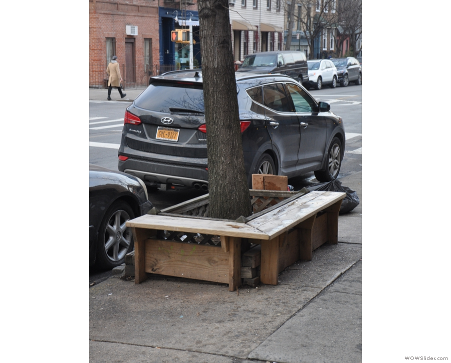 ... and these benches around a tree trunk, which reminded me of the Mott Street branch.