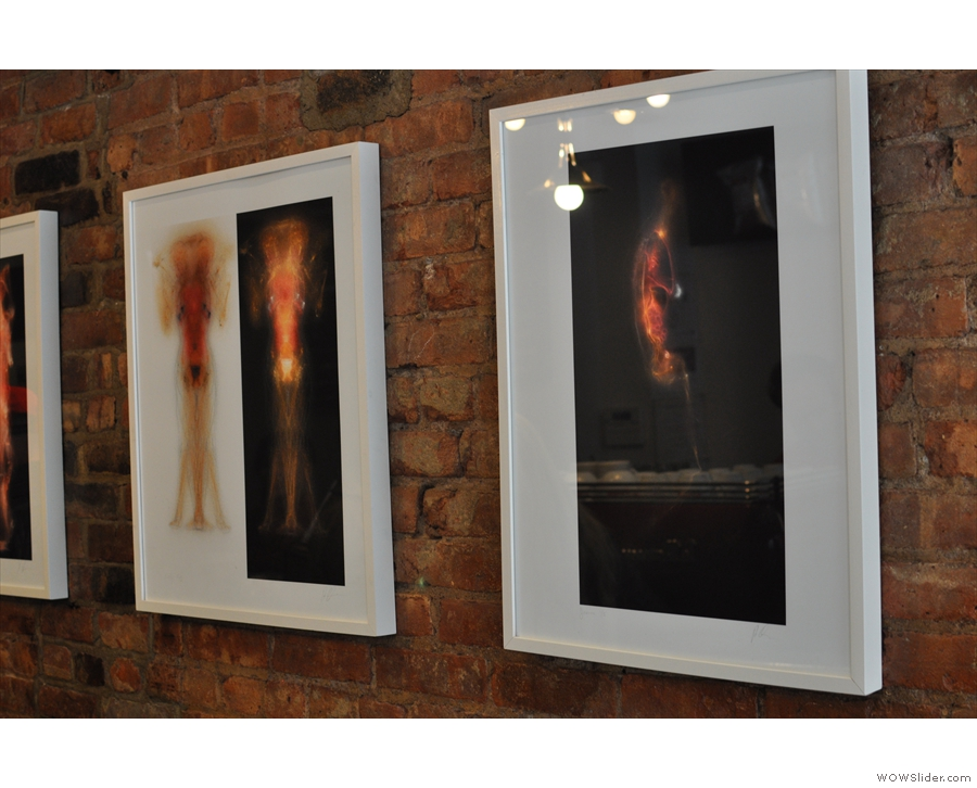 There are photos artfully hung on the plain brick wall...