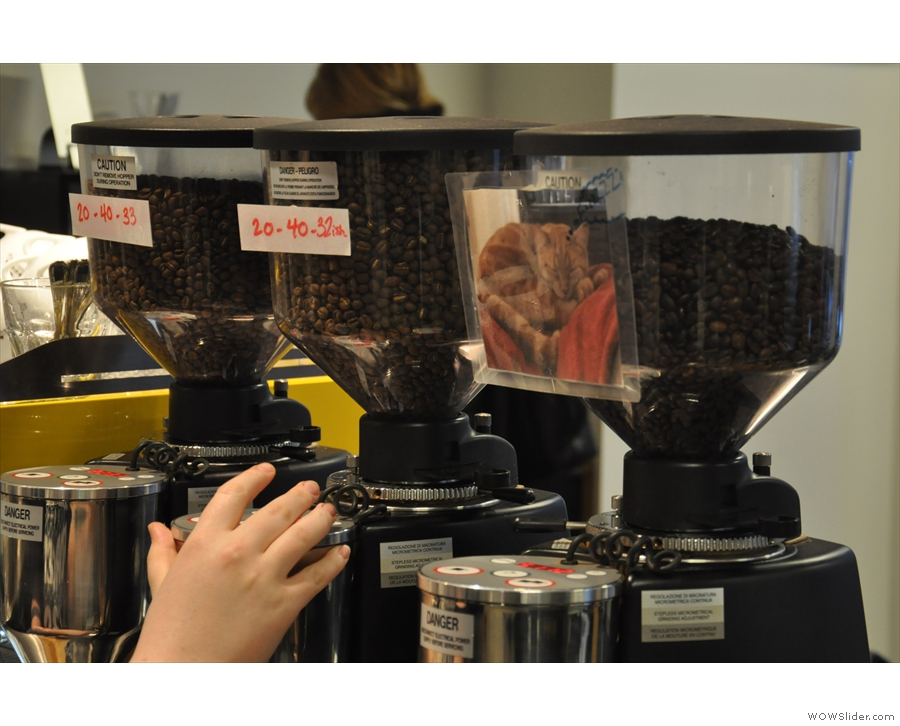 Each bean has its own grinder, with the recipe taped to it, except the decaf (right).