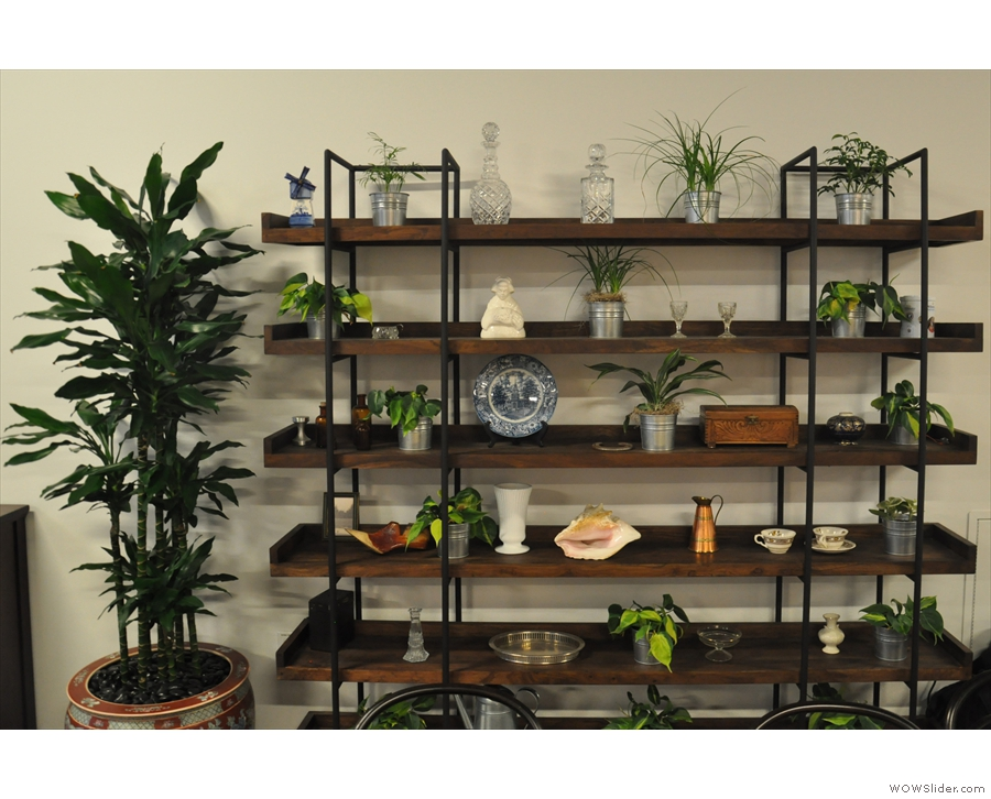 ... and of course the shelves with the plants. These are against the left-hand wall...