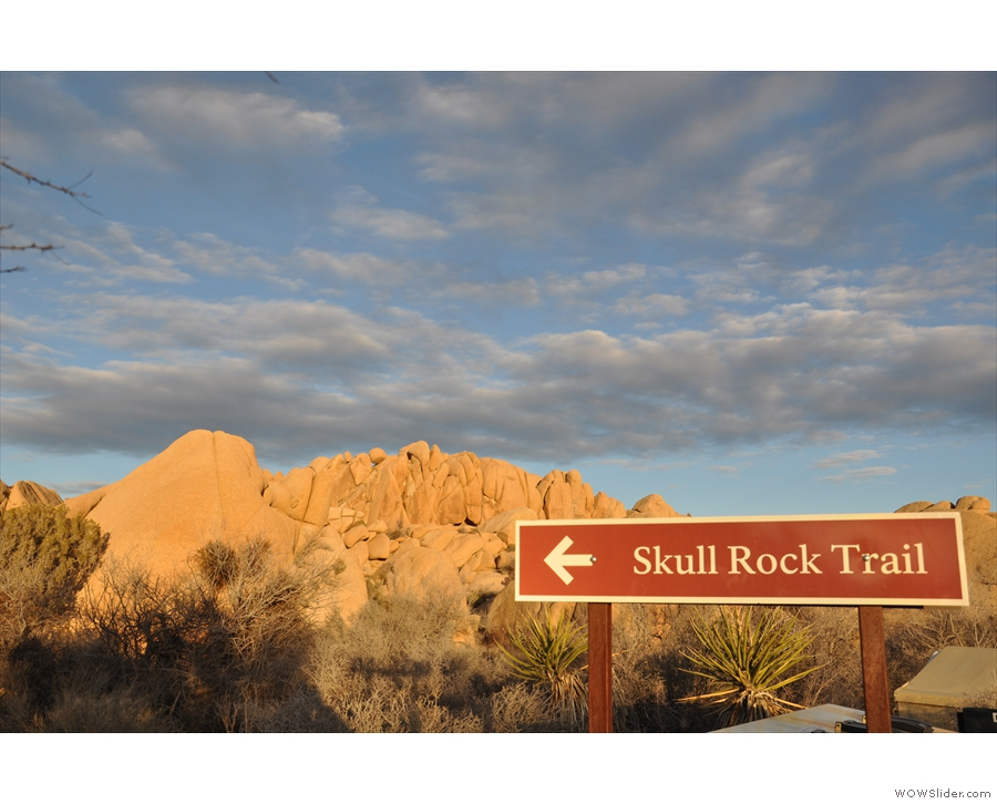 By now I had reached the Jumbo Rocks Campground and I decided to wait there for sunset.