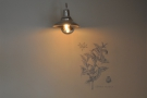 The second is a lovely light-fitting, along with another drawing (an Arabica coffee plant).