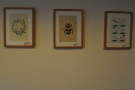 There's not much decoration insde Brew, but these pictures adorn the walls.