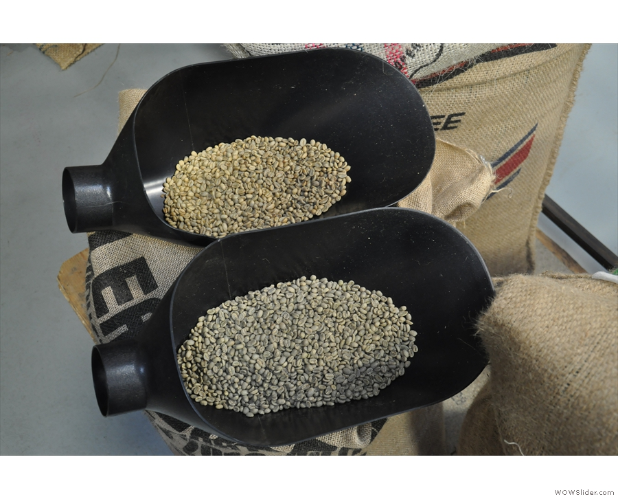 And here they are, side-by-side. You can really see the impact processing has on the beans.