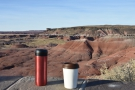 We ended the day at the northern edge of the park, looking out over the Painted Desert.