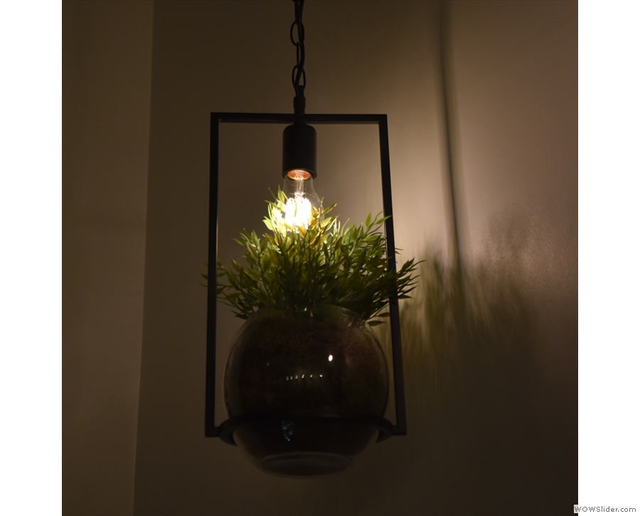 Lampshade and greenery, all rolled into one!