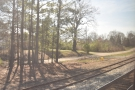 There are still plenty of trees around as we trundle through Alabama...