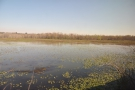 As we head further south, crossing into Mississippi, the landscape becomes more watery...